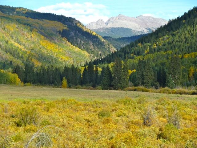 Hunter Creek