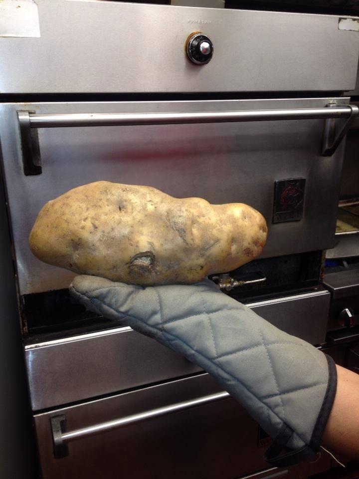 4-pound-potato