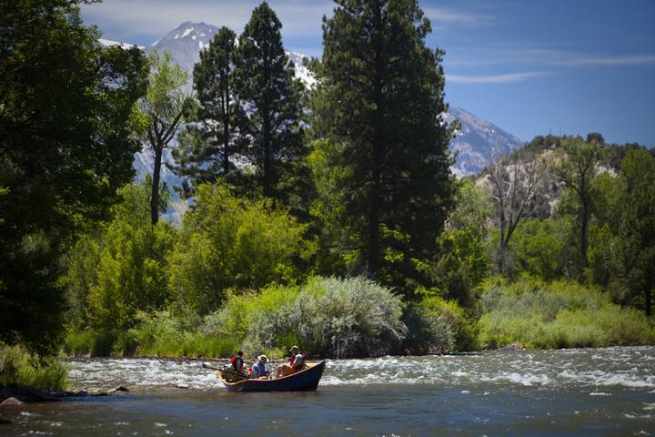 Fishing in Aspen