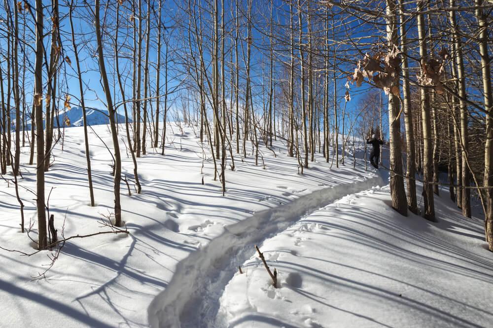 snowshoe spots