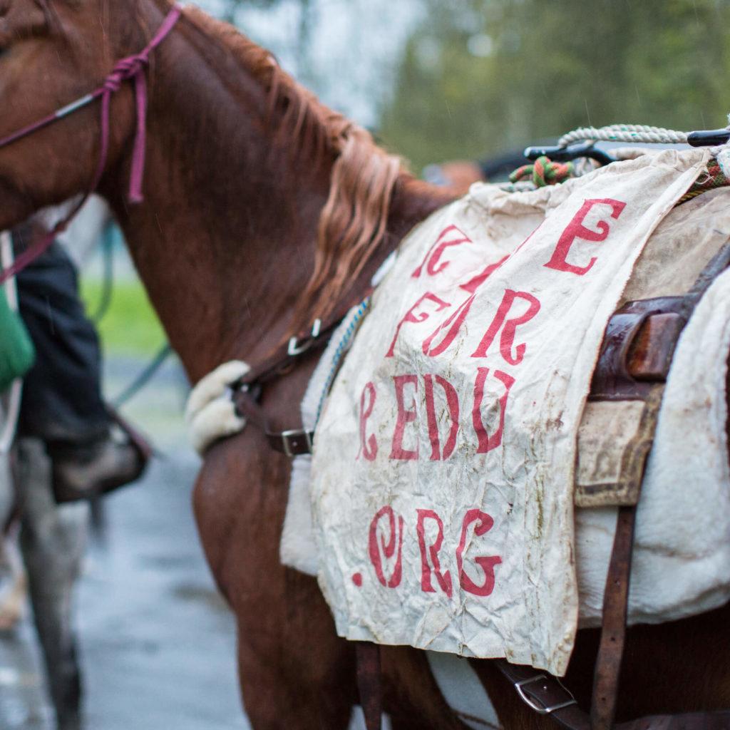Ride for Redd