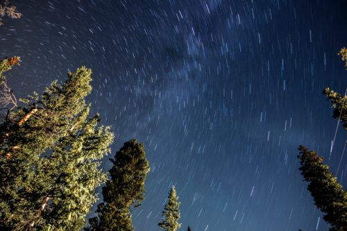 Time-lapse image of stars above the trees near the Sun Valley in Idaho.